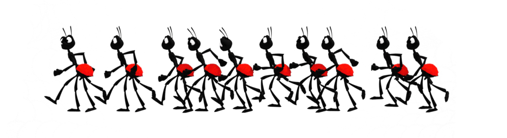ants for animation